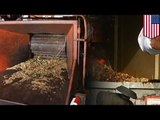 Woodchipper accident: man killed after falling into industrial wood chipper in Florida
