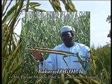 Bakary TOGOLA, un paysan modèle au Mali pour les générations futures