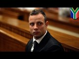 Oscar Pistorius trial: witness says Pistorius asked friend to take the rap for a firearms offence