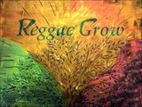 BLUE HAZE  -  SMOKE GETS IN YOUR EYES - Reggae