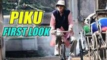 Piku Full Movie Streaming Online in HD-720p