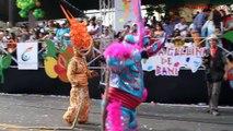 Los tradicionales lechones de santiago de los caballeros (Carnaval 2013)