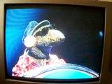 BBC Puppets (muppets?)