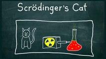 Schrödinger's Cat - Physics Thought Experiment, Superposition, Quantum Mechanics
