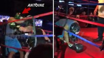 Antoine Dodson: Suffers Softest KO Of All Time... In Celeb Boxing Match