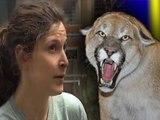 Cougar attacks, kills Oregon wildlife caretaker