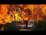Australian bushfires expected to create rare high-altitude cloud