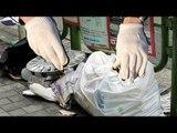 ゴミ収集員がゴミを不法投棄