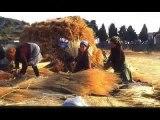 La vita contadina - Si stava meglio quando si stava peggio!