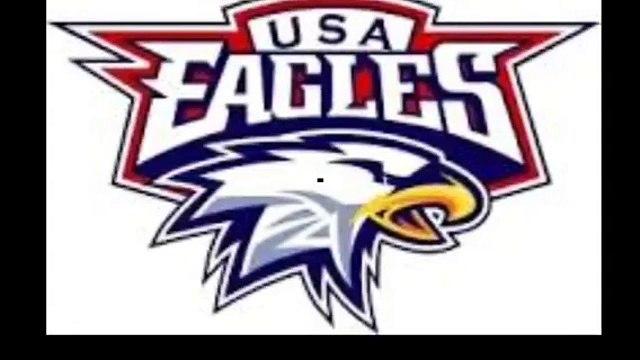 USA Eagles - Hockey