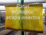 Panel ecologico atrapa insectos