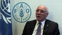 Entrevista: Ministro de Relaciones Exteriores de Paraguay, Eladio Ramón Loizaga Lezcano