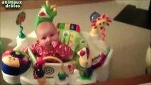 Chiens drôles Meilleure Garde animaux pour bébés Compilation 2014