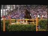 Equitation - Saut d'obstacles