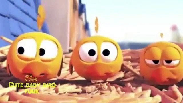 Angry Birds Singing Video - Angry Birds Game Cartoon   Funny Angry Birds Videos