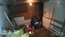 Sleeping in the Chicken House Prank - Drug his friend with sleeping pills and put him in chicken house