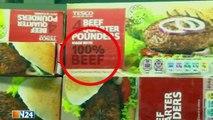 Pferdefleisch in Burgern - Rätsel in Großbritannien und Irland