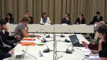 """Ségolène Royal réunit la commission """"Santé Environnement"""" en vue de la Conférence environnementale"""