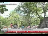 TV Patrol Southern Tagalog - December 12, 2014
