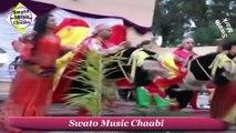 Chaabi Marocain 2015 - dima chaaiba - Mohamed El Meskini -Jadid Chikhat 2015 - رقص شعبي مغربي رائع[1]