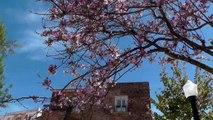 Aquarelles et croquis sur la route du bleu , en stage carnet de voyage au Portugal...