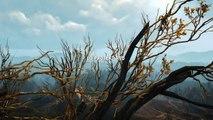 The Witcher 3 : Wild Hunt - Bande-annonce de lancement