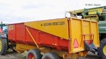 Loonbedrijf Buysse & Mangnus - Ploeger EPD490 - bonen dorsen 2012