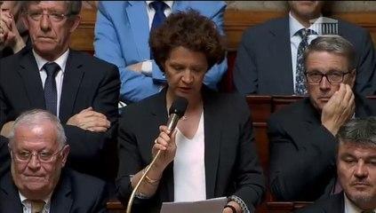 Françoise Guégot - Gestation pour autrui