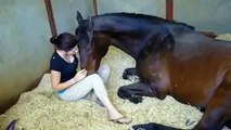Girl VS Horse