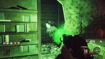 Amazing Perk Easter Egg! [10 Point Perk] - (Black Ops Zombies: Buried)