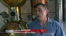 Ludovic, distillateur (mars 2015)