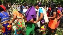 Indígenas emberá dicen no a la minería