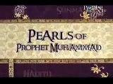 shaikh ahmed deedat and zakir naik