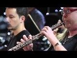 TV3 - Ets música - P. I. Txaikovski - El llac dels cignes