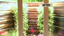 """DIY House Crashers - """"Nature Inspired Eco-Bath"""""""