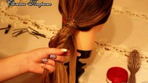 Braided Hair Updo Hairstyle Tutorial