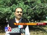 "Tv9 Gujarat - Amitabh Bachchan To Shoot in Junagadh for ""Khushboo Gujarat Ki"""