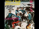 Chinese The Rocking Skippers band -guitar instrumentals