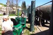 Ecomotion handover Aalborg Zoo