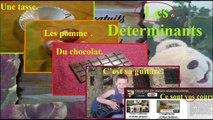 Cours français ce2 sur les déterminants | Apprendre le français en s'amusant