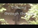 Katy Perry Roar Lyric Video - Katy Perry Roar Lyric Video Cover w/ WILD TIGER