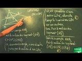 062 / Triangle et parallèles / Utilisation des théorèmes du cours (14)