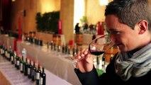 Dégustation primeurs du millésime 2011 des vins de Saint-Emilion