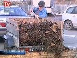 Environnement : Les métiers liés aux déchets  (Tours)