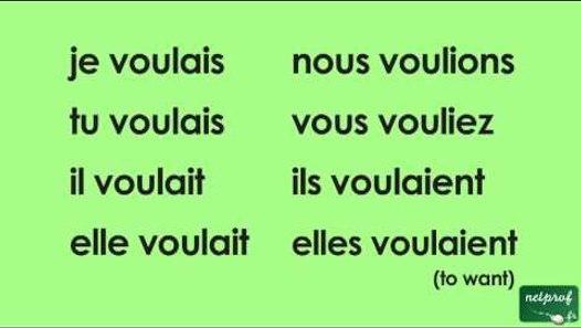 Conjugaison Du Verbe Vouloir A L Imparfait De L Indicatif Video Dailymotion