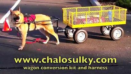 Chalo Sulky Wagon Conversion Kit