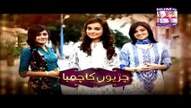 Chirryon Ka Chamba Episode 19 - 21 May 2015 - Hum Sitarey