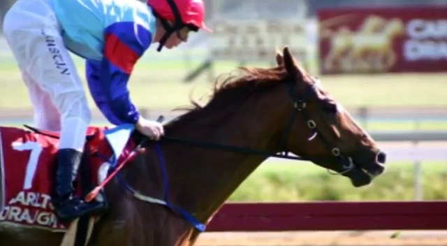 Top 5 Horse Racing Tips That Make You a Winner
