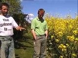 """""""Von Bauern für Bauern"""" - Direktsaat mit Flurbegehung"""