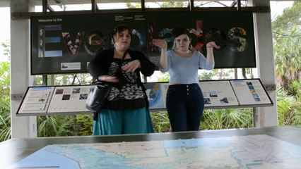 Louisiana-Bahamas-Florida 2014, jour 12: Everglades